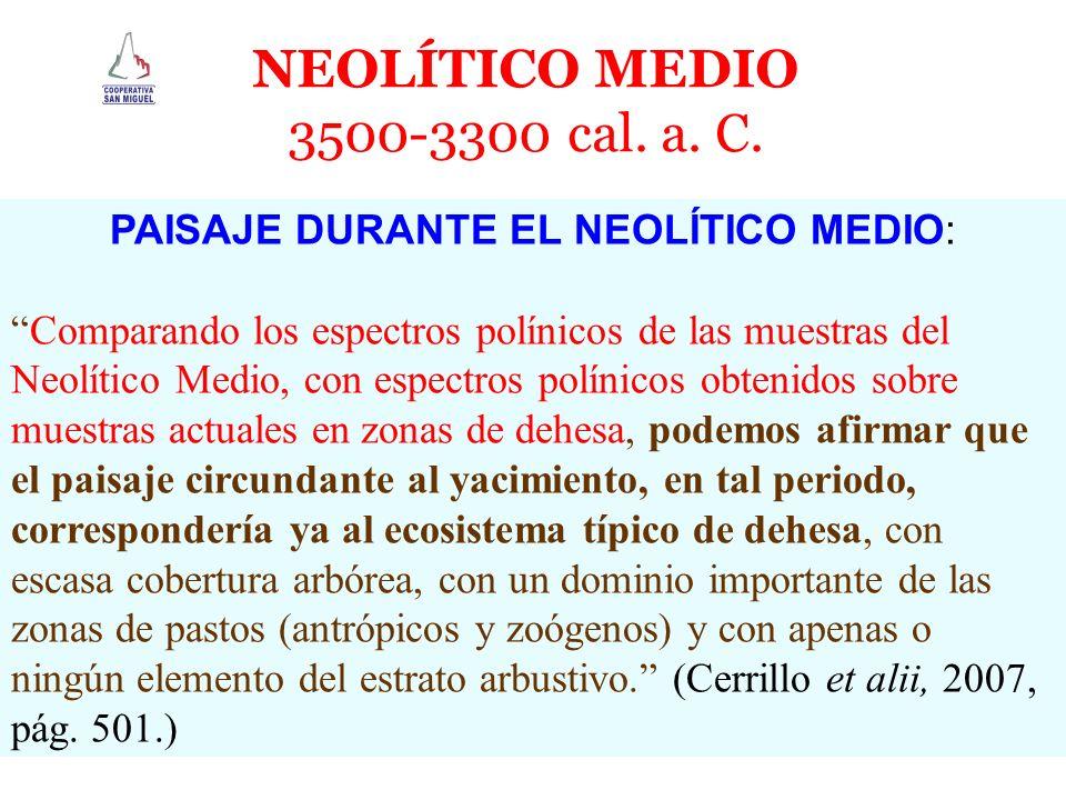 NEOLÍTICO MEDIO 3500-3300 cal. a. C. PAISAJE DURANTE EL NEOLÍTICO MEDIO: Comparando los espectros polínicos de las muestras del Neolítico Medio, con e