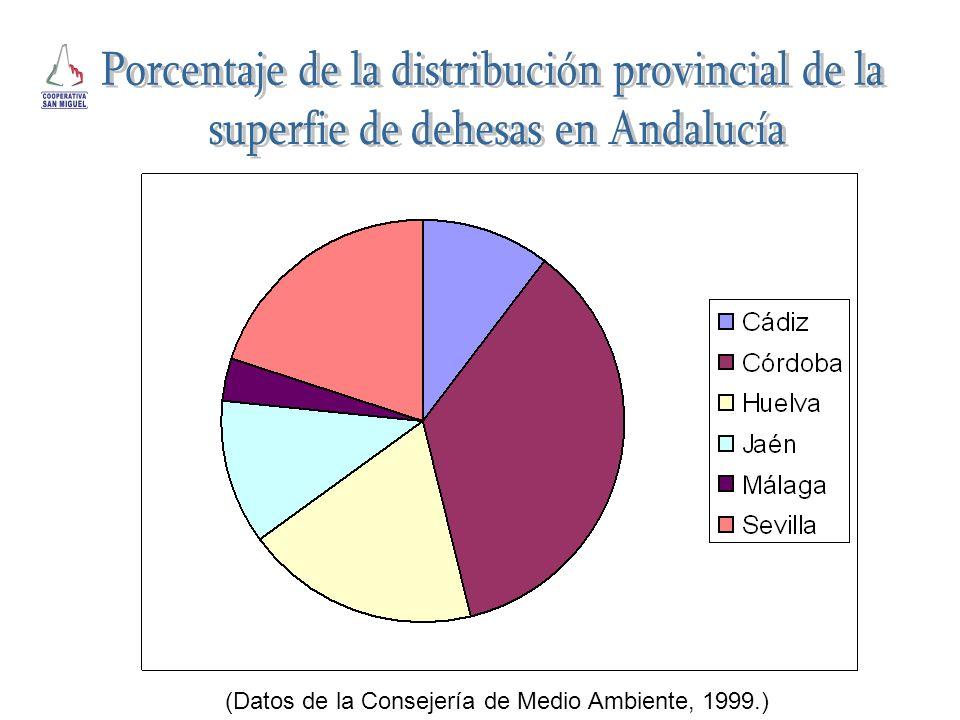 Dehesa (ha)% de Andalucía Cádiz128.533,5710,18 Córdoba452.813,3635,85 Huelva240.585,2819,05 Jaén147.519,5311,68 Málaga42.713,033,38 Sevilla250.978,2219,87 Andalucía1.263.142,99 (Datos de la Consejería de Medio Ambiente, 1999.)
