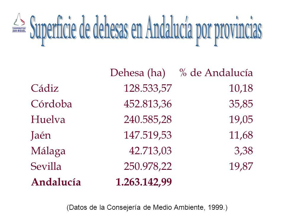 Dehesa (ha)% de Andalucía Cádiz128.533,5710,18 Córdoba452.813,3635,85 Huelva240.585,2819,05 Jaén147.519,5311,68 Málaga42.713,033,38 Sevilla250.978,221