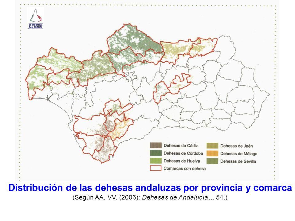 Comarca Superficie dehesa (ha) % dehesa de la comarca Campiña27.503,3321,40 Campo de Gibraltar39.375,3430,63 La Janda24.567,7419,12 Sierra de Cádiz37.087,1528,85 Campiña23.050,525,09 Sierra131.054,3128,95 Pedroches291.000,3964,26 Penibética7.708,151,70 Andévalo Occidental79.519,8433,05 Andévalo Oriental27.083,9311,25 Costa8.873,913,69 Sierra125.127,5952,01 Campiña del Norte3552,302,41 El Condado39.506,3926,78 Sierra Morena96.746,4465,58 Sierra Sur77.14,405,23 Norte o Antequera15.54,993,62 Sierra de Ronda41.168,0496,38 Campiña4.636,471,85 Sierra Norte210.447,1583,85 Sierra Sur19.381,997,90 Vega16.062,616,40 Cádiz Córdoba Huelva Jaén Málaga Sevilla (Datos de la Consejería de Medio Ambiente, 1999.)