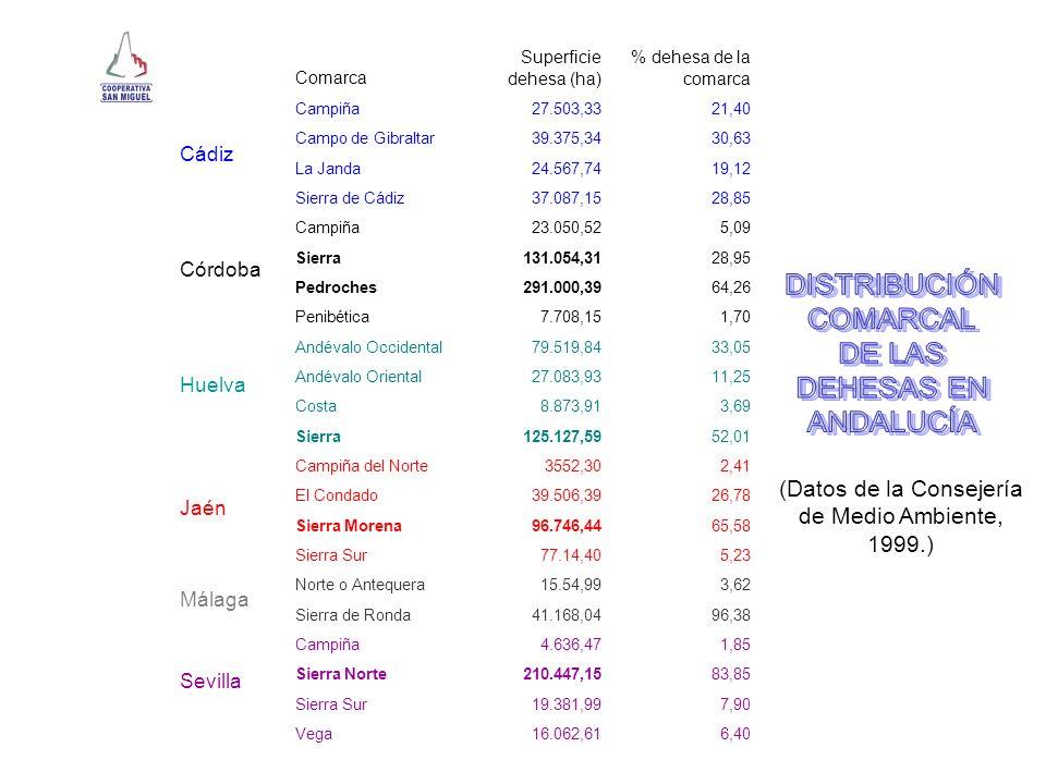COMARCAS DE CADA PROVINCIA ANDALUZA CON MAYOR SUPERFICIE DE DEHESAS ProvinciaComarcaSuperficie ha CádizCampo de Gibraltar39.375,34 CórdobaPedroches291.000,39 HuelvaSierra125.127,59 JaénSierra Morena96.746,44 MálagaSierra de Ronda41.168,04 SevillaSierra Norte210.447,15