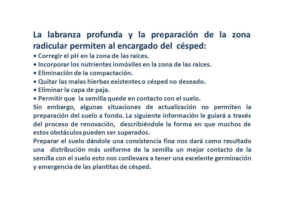 I.Reparación de Césped Dañado 1.