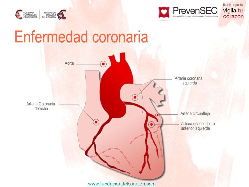 www.fundaciondelcorazon.com En épocas de calor bajar las dosis Evitar cambios posturales bruscos Cambiar de fármaco Hipertensión arterial IECA / ARAII.