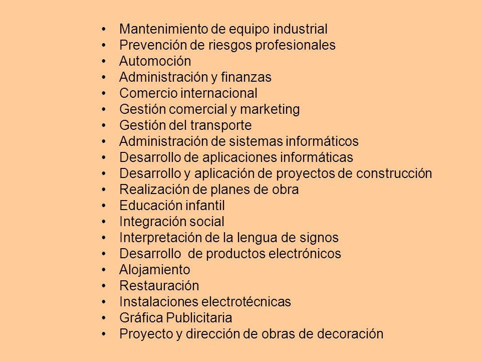 Mantenimiento de equipo industrial Prevención de riesgos profesionales Automoción Administración y finanzas Comercio internacional Gestión comercial y