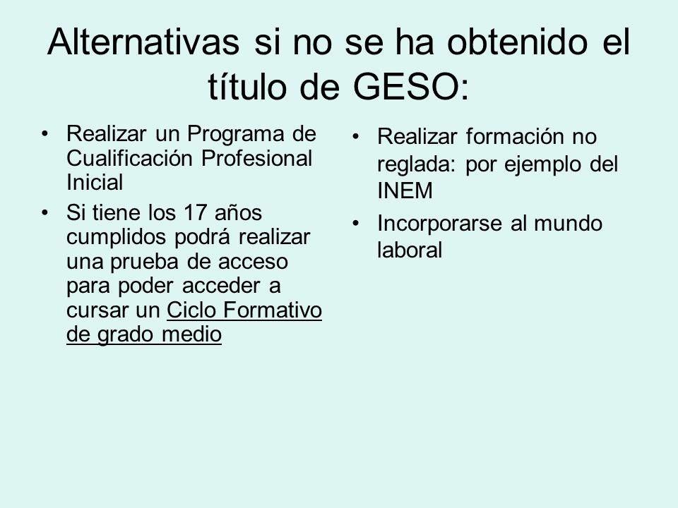 Alternativas si no se ha obtenido el título de GESO: Realizar un Programa de Cualificación Profesional Inicial Si tiene los 17 años cumplidos podrá re
