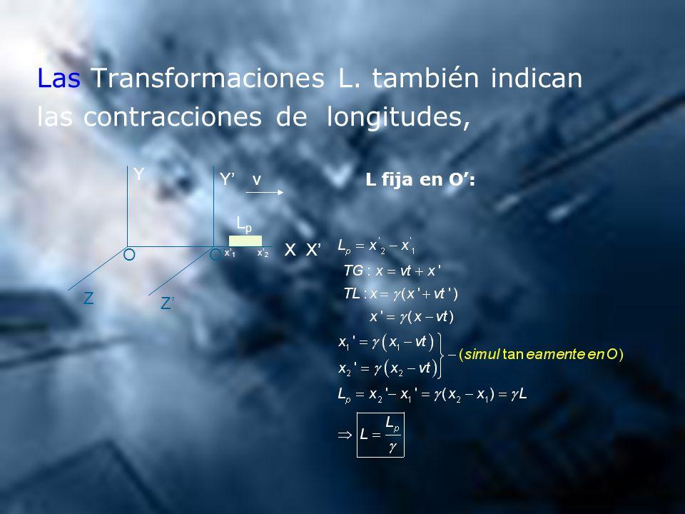 Las Transformaciones L. también indican las contracciones de longitudes, Z Z Y Y XX OO LpLp x1 x1 x2 x2 v L fija en O: