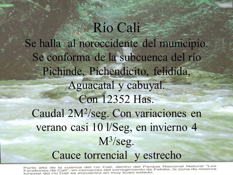 Río Cali Se halla al noroccidente del municipio. Se conforma de la subcuenca del río Pichinde, Pichendicito, felidida, Aguacatal y cabuyal. Con 12352