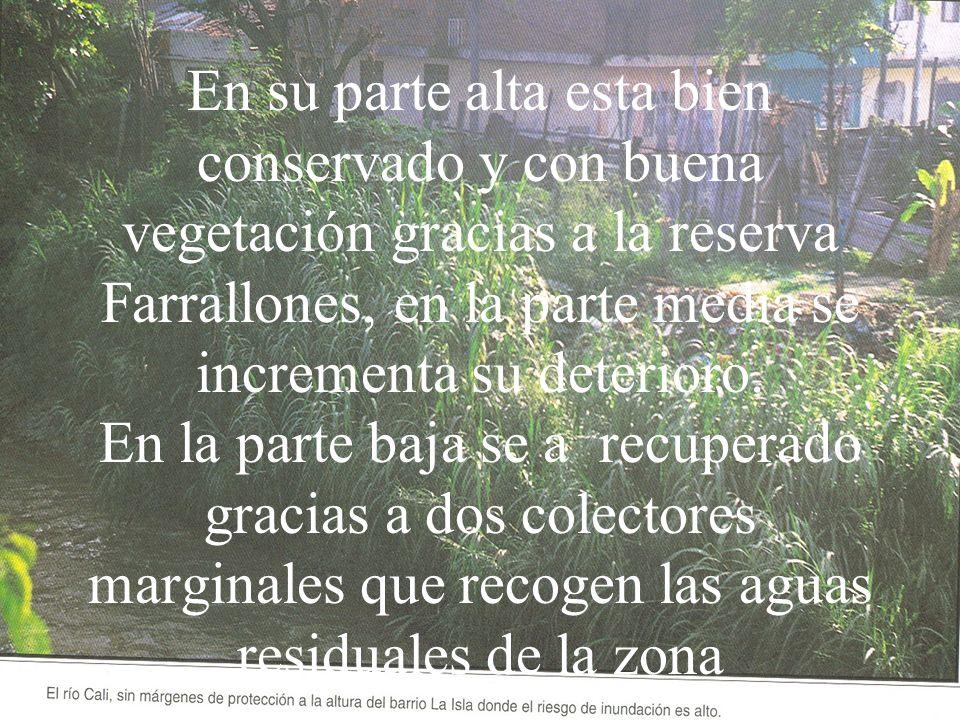 En su parte alta esta bien conservado y con buena vegetación gracias a la reserva Farrallones, en la parte media se incrementa su deterioro. En la par