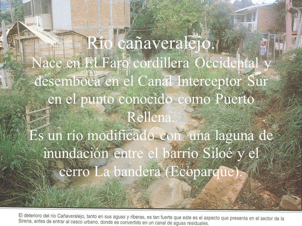 Río cañaveralejo. Nace en El Faro cordillera Occidental y desemboca en el Canal Interceptor Sur en el punto conocido como Puerto Rellena. Es un río mo