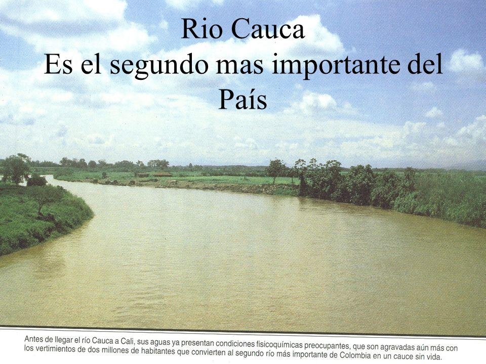 Rio Cauca Es el segundo mas importante del País