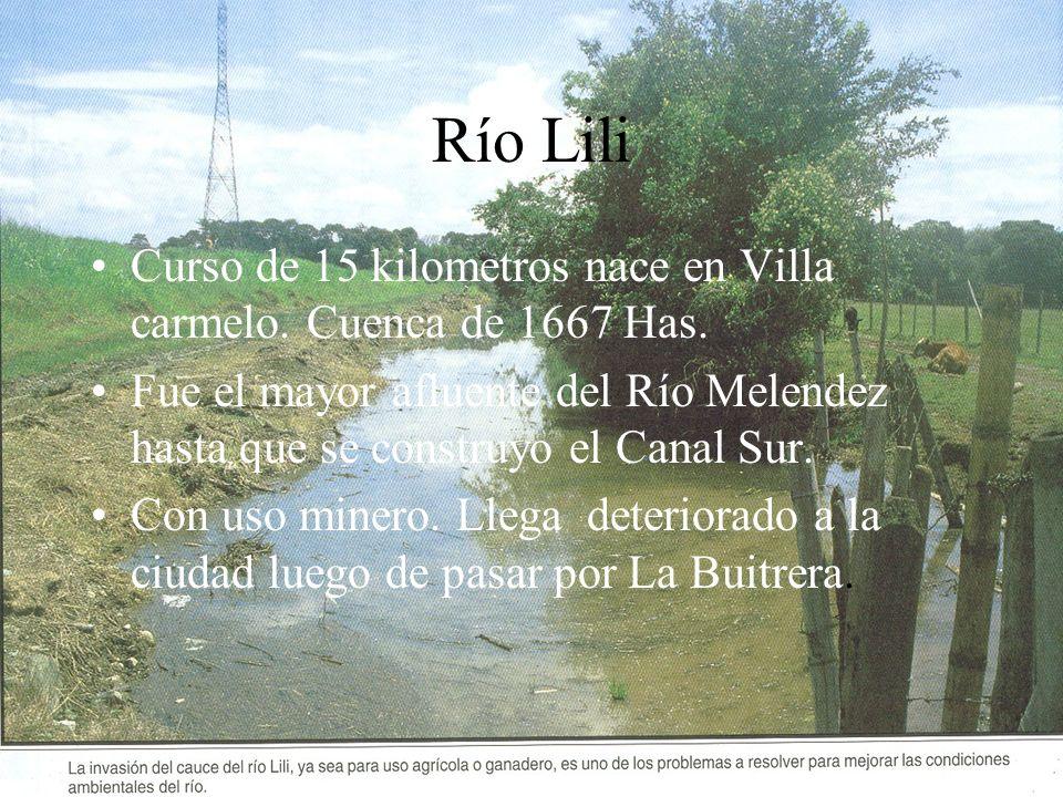 Río Lili Curso de 15 kilometros nace en Villa carmelo. Cuenca de 1667 Has. Fue el mayor afluente del Río Melendez hasta que se construyo el Canal Sur.