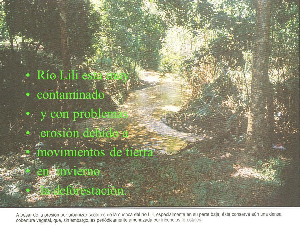Río Lili esta muy contaminado y con problemas erosión debido a movimientos de tierra en invierno la deforestación.