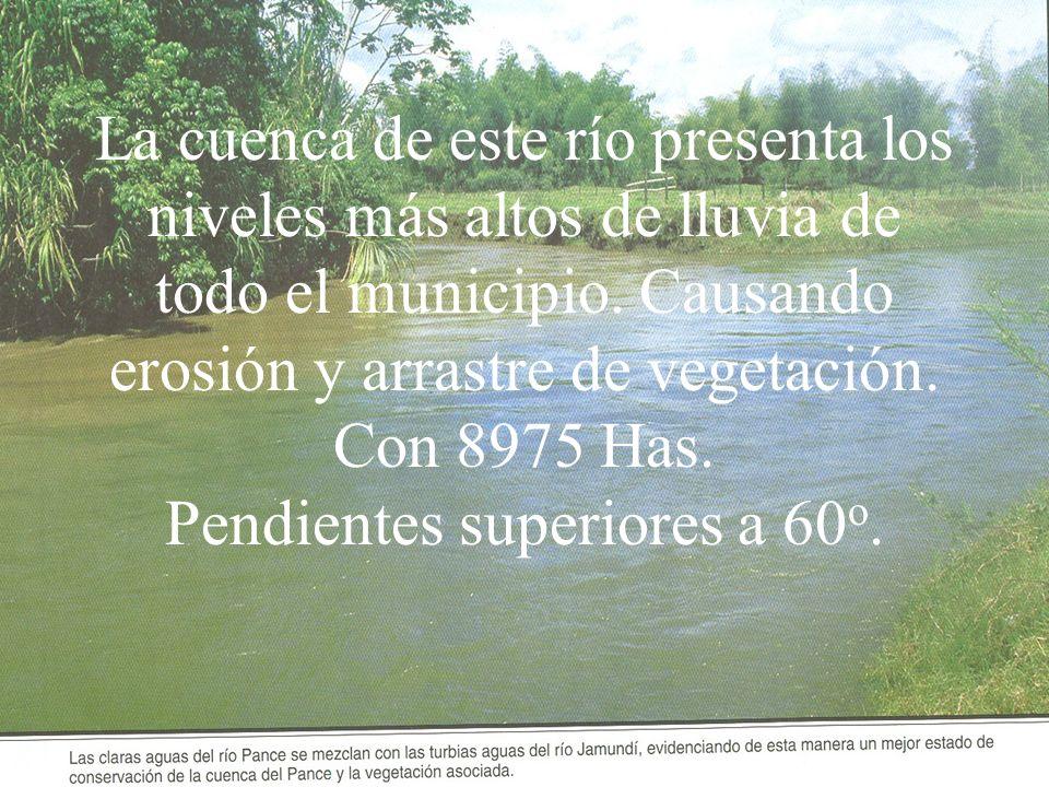 La cuenca de este río presenta los niveles más altos de lluvia de todo el municipio. Causando erosión y arrastre de vegetación. Con 8975 Has. Pendient