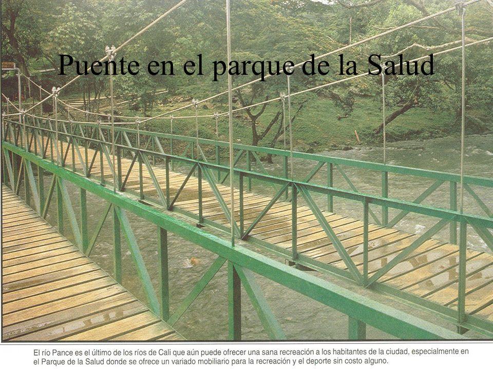 Puente en el parque de la Salud
