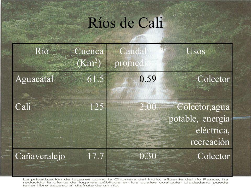 Ríos de Cali RíoCuenca (Km 2 ) Caudal promedio Usos Aguacatal61.50.59Colector Cali1252.00Colector,agua potable, energía eléctrica, recreación Cañavera