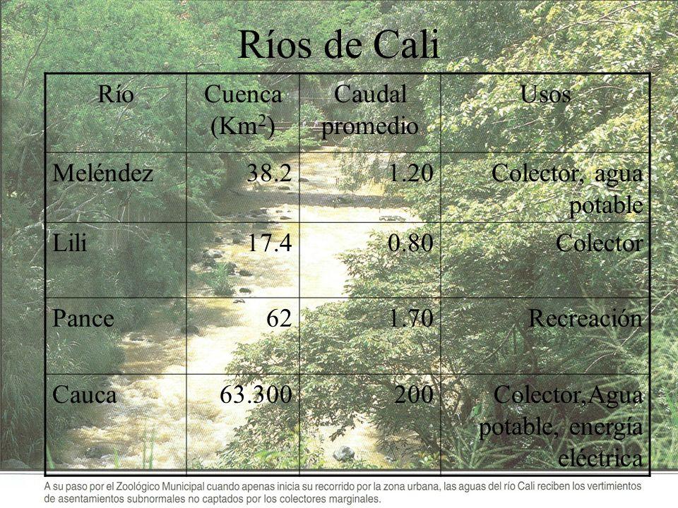 Ríos de Cali RíoCuenca (Km 2 ) Caudal promedio Usos Meléndez38.21.20Colector, agua potable Lili17.40.80Colector Pance621.70Recreación Cauca63.300200Co