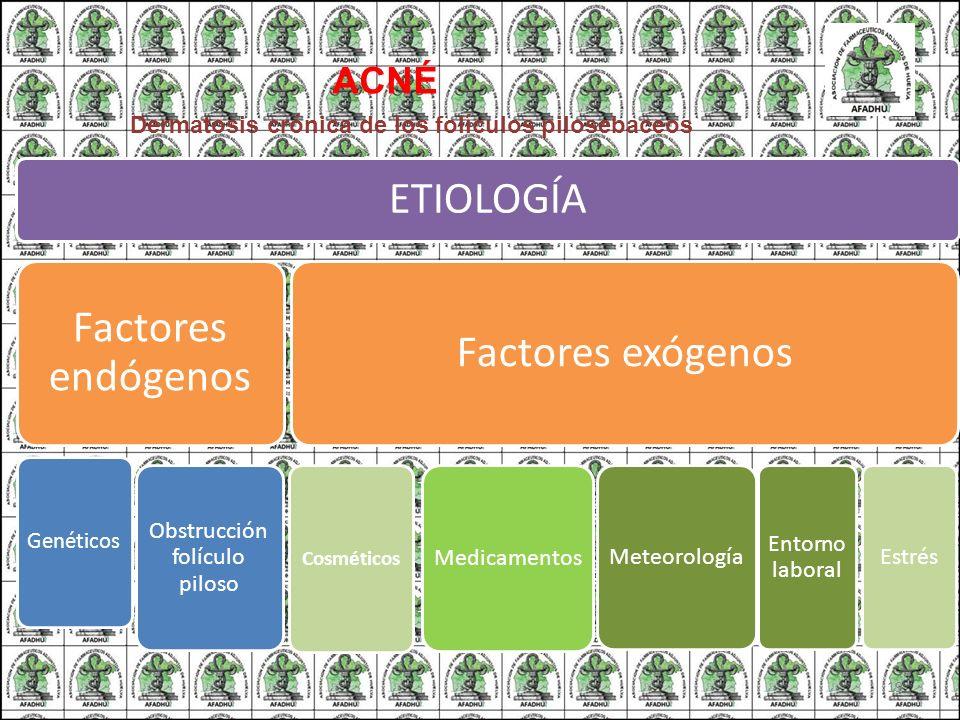 ACNÉ Dermatosis crónica de los folículos pilosebaceos ETIOLOGÍA Factores endógenos Genéticos Obstrucción folículo piloso Factores exógenos Cosméticos