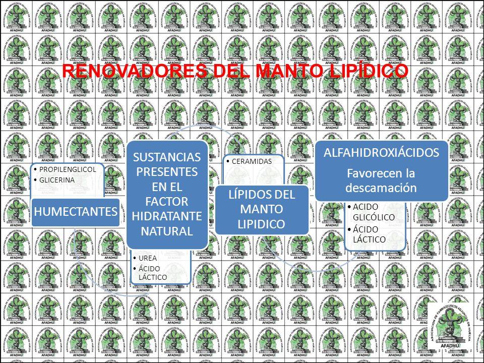 PROPILENGLICOL GLICERINA HUMECTANTES UREA ÁCIDO LÁCTICO SUSTANCIAS PRESENTES EN EL FACTOR HIDRATANTE NATURAL CERAMIDAS LÍPIDOS DEL MANTO LIPIDICO ACID