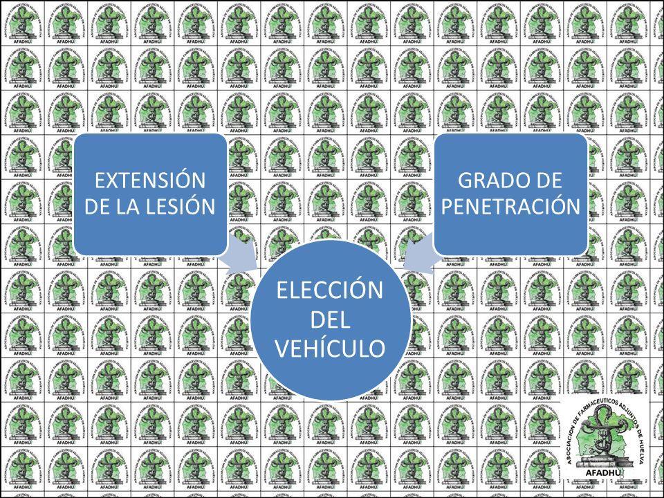 ELECCIÓN DEL VEHÍCULO EXTENSIÓN DE LA LESIÓN GRADO DE PENETRACIÓN 8