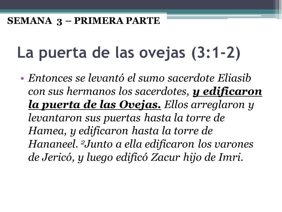 La puerta de las ovejas (3:1-2) Entonces se levantó el sumo sacerdote Eliasib con sus hermanos los sacerdotes, y edificaron la puerta de las Ovejas. E