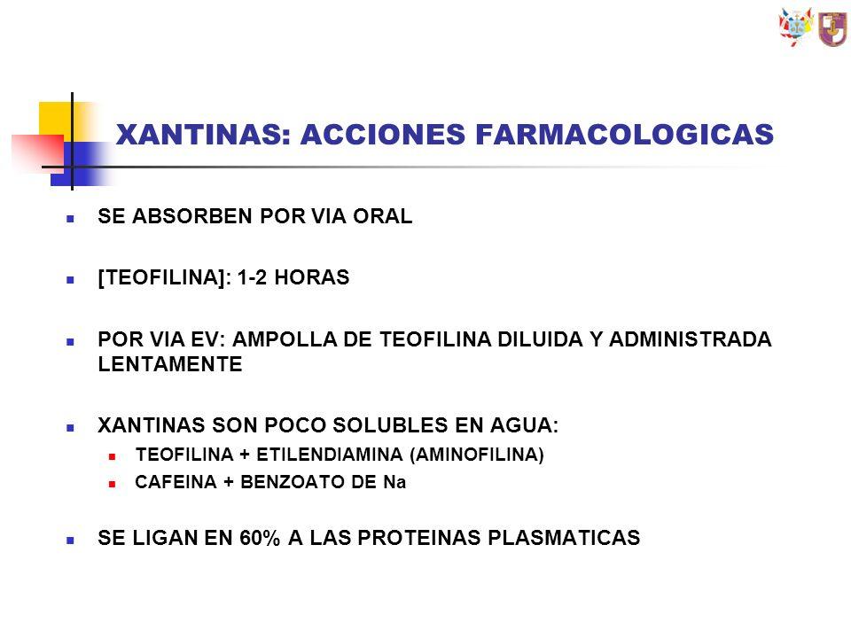 XANTINAS: ACCIONES FARMACOLOGICAS SE ABSORBEN POR VIA ORAL [TEOFILINA]: 1-2 HORAS POR VIA EV: AMPOLLA DE TEOFILINA DILUIDA Y ADMINISTRADA LENTAMENTE X