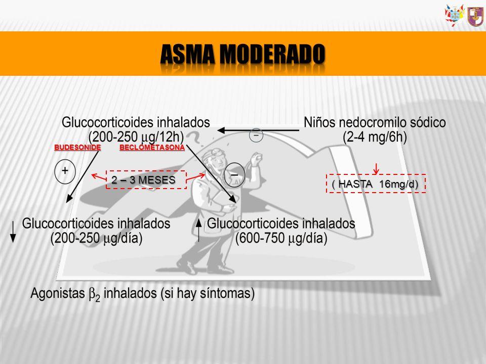 2 – 3 MESES ( HASTA 16mg/d) BUDESONIDEBECLOMETASONA