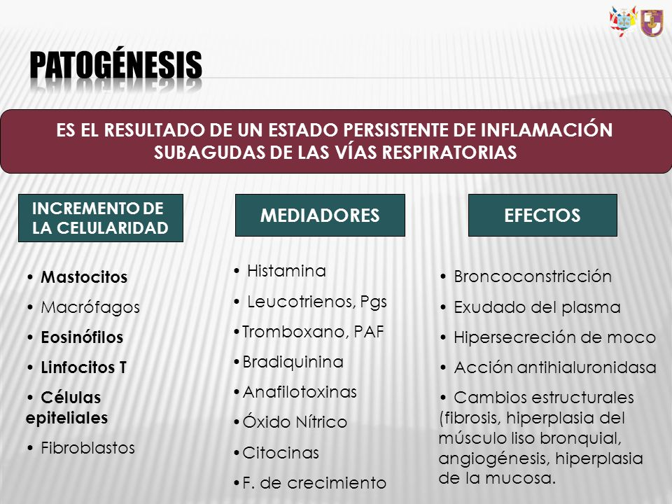 ES EL RESULTADO DE UN ESTADO PERSISTENTE DE INFLAMACIÓN SUBAGUDAS DE LAS VÍAS RESPIRATORIAS INCREMENTO DE LA CELULARIDAD MEDIADORESEFECTOS Mastocitos