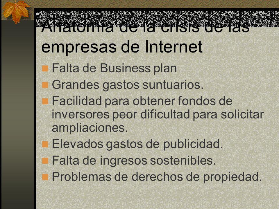 Anatomía de la crisis de las empresas de Internet Falta de Business plan Grandes gastos suntuarios. Facilidad para obtener fondos de inversores peor d