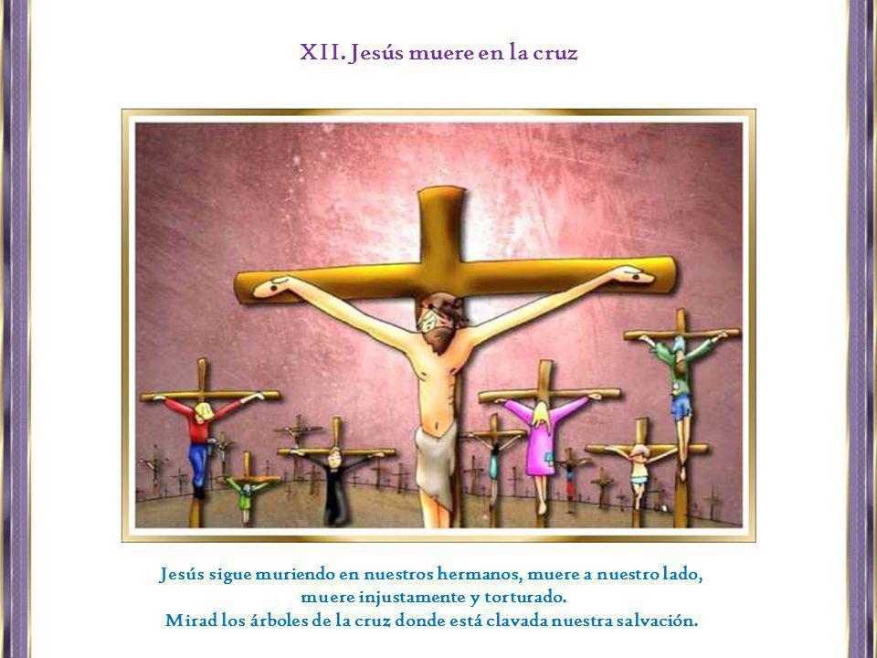 Jesús sigue muriendo en nuestros hermanos, muere a nuestro lado, muere injustamente y torturado. Mirad los árboles de la cruz donde está clavada nuest