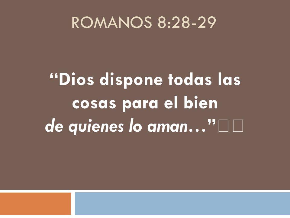 ROMANOS 8:28-29 Dios dispone todas las cosas para el bien de quienes lo aman…