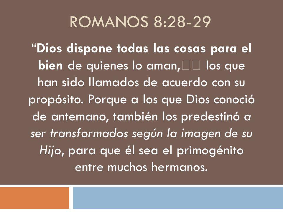 ROMANOS 8:28-29 Dios dispone todas las cosas para el bien de quienes lo aman, los que han sido llamados de acuerdo con su propósito. Porque a los que