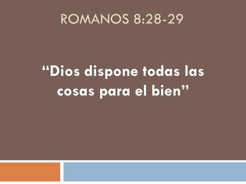 ROMANOS 8:28-29 Dios dispone todas las cosas para el bien