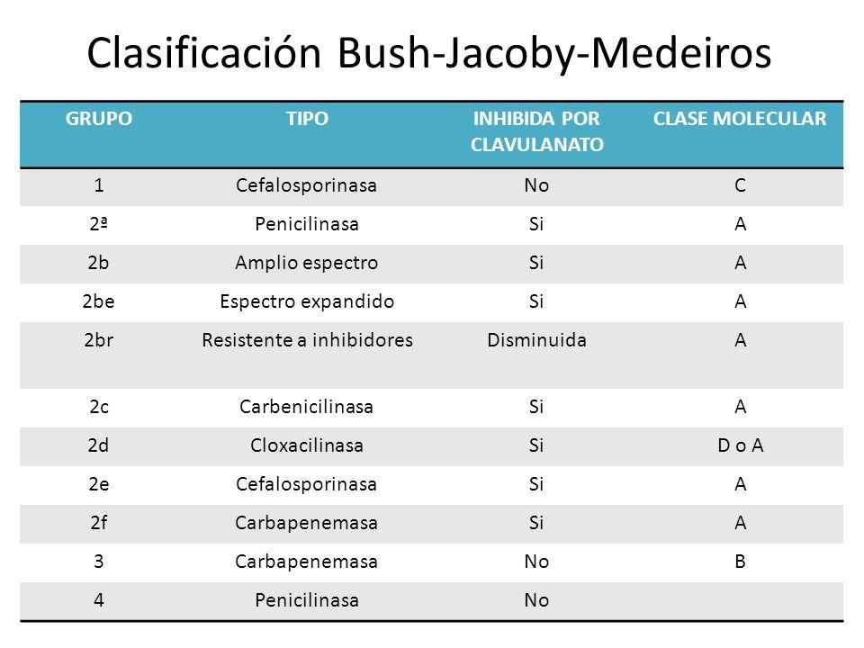 Clasificación Bush-Jacoby-Medeiros GRUPOTIPOINHIBIDA POR CLAVULANATO CLASE MOLECULAR 1CefalosporinasaNoC 2ªPenicilinasaSiA 2bAmplio espectroSiA 2beEsp
