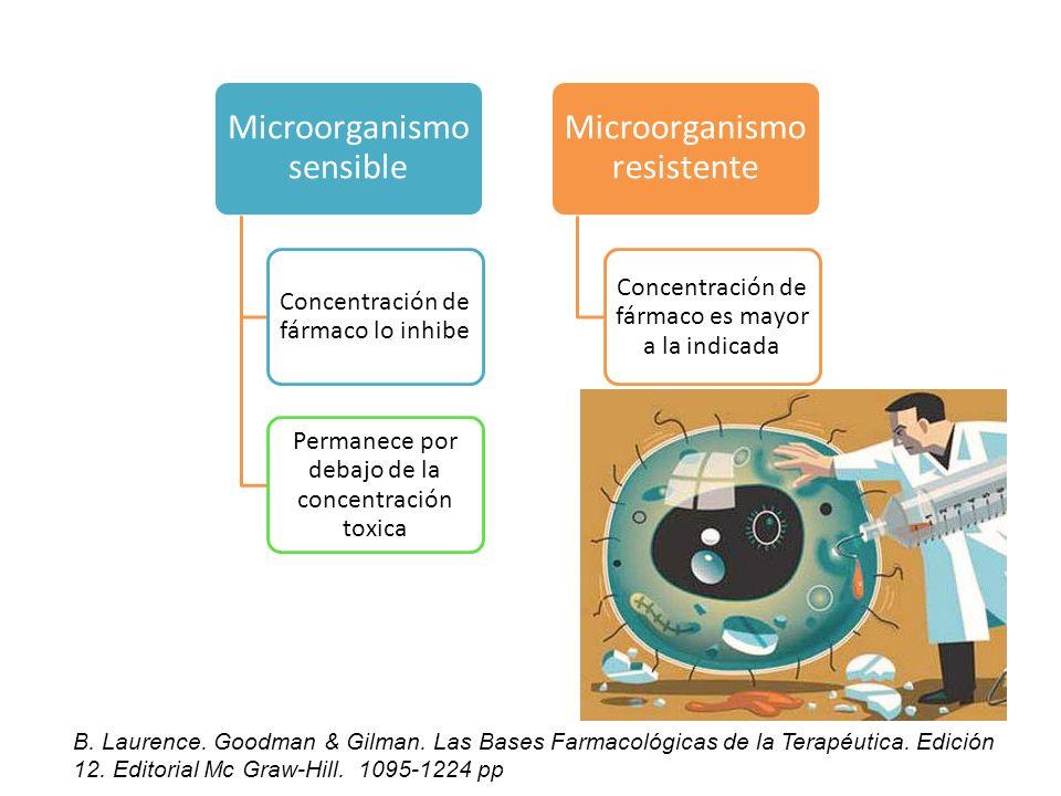 Microorganismo sensible Concentración de fármaco lo inhibe Permanece por debajo de la concentración toxica Microorganismo resistente Concentración de