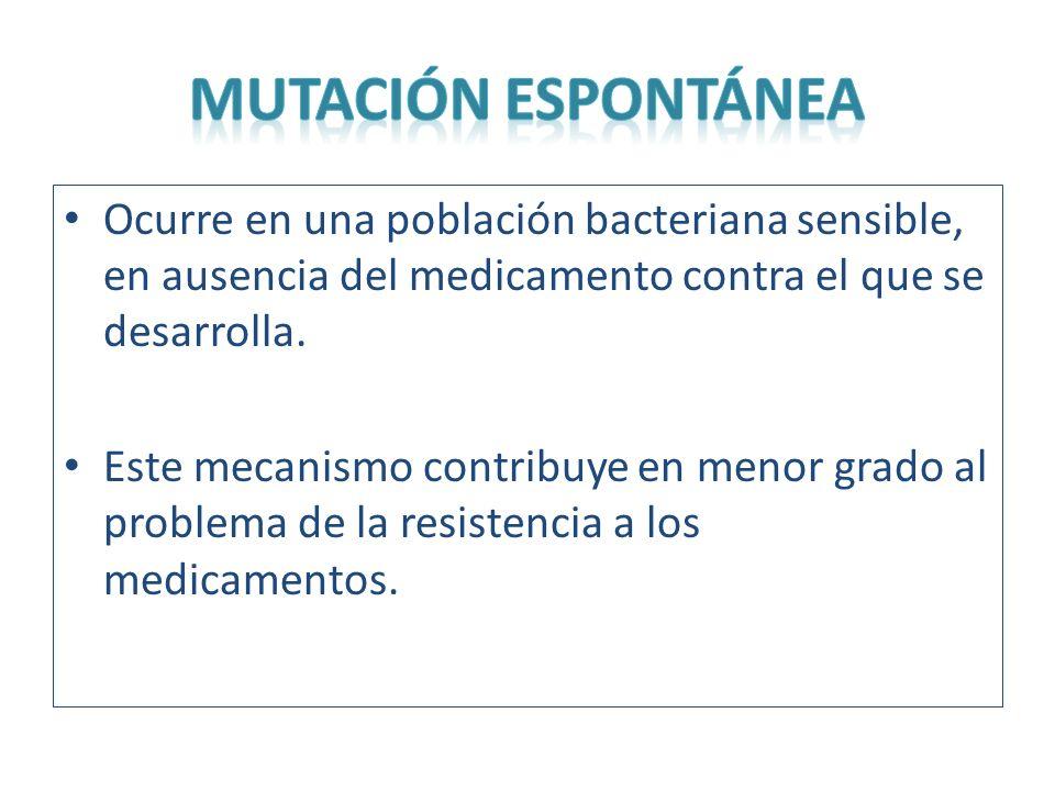 Ocurre en una población bacteriana sensible, en ausencia del medicamento contra el que se desarrolla. Este mecanismo contribuye en menor grado al prob