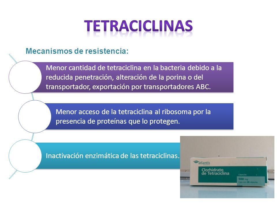 Mecanismos de resistencia: Menor cantidad de tetraciclina en la bacteria debido a la reducida penetración, alteración de la porina o del transportador