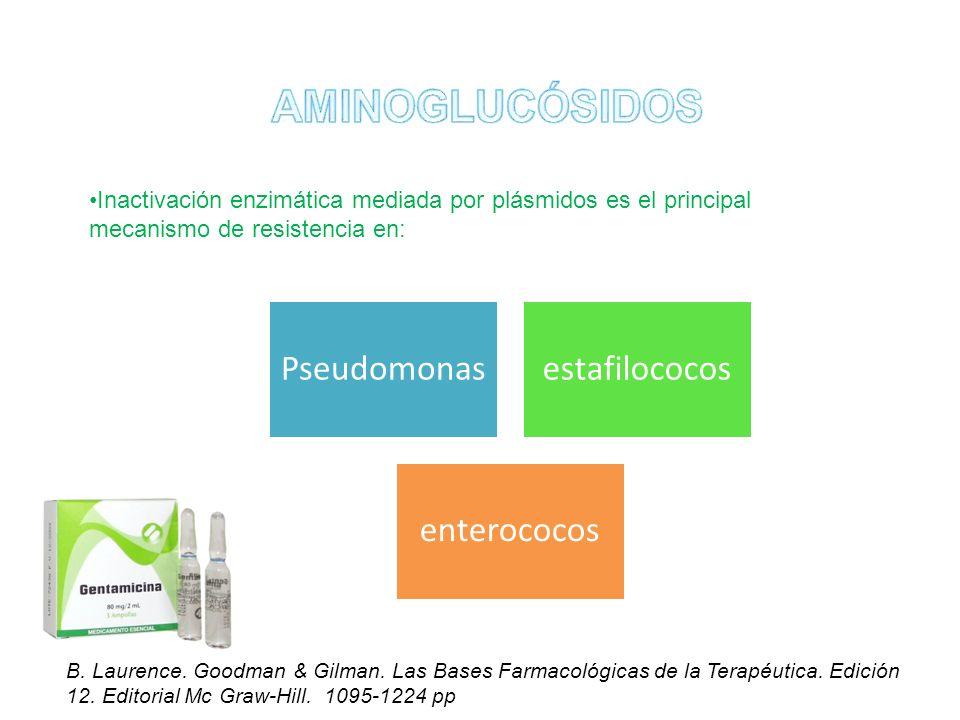 Inactivación enzimática mediada por plásmidos es el principal mecanismo de resistencia en: Pseudomonasestafilococos enterococos B. Laurence. Goodman &