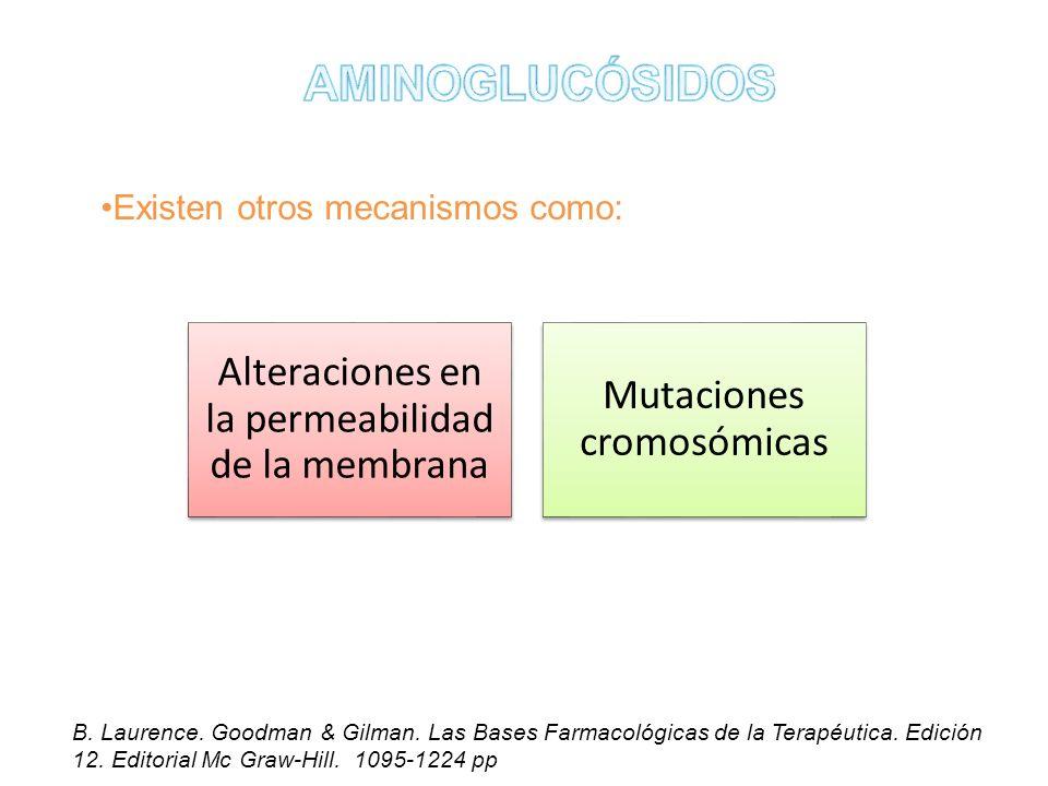 Existen otros mecanismos como: Alteraciones en la permeabilidad de la membrana Mutaciones cromosómicas B. Laurence. Goodman & Gilman. Las Bases Farmac
