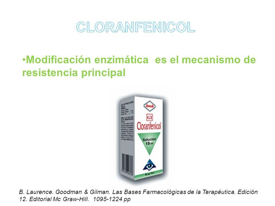 Modificación enzimática es el mecanismo de resistencia principal B. Laurence. Goodman & Gilman. Las Bases Farmacológicas de la Terapéutica. Edición 12