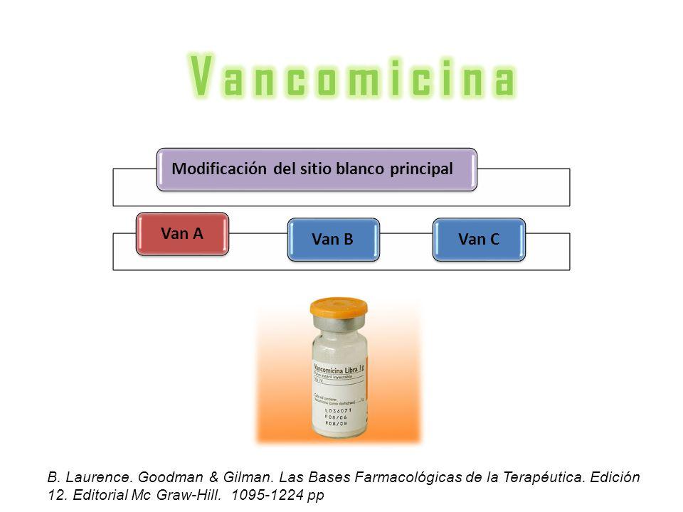 Modificación del sitio blanco principalVan AVan BVan C B. Laurence. Goodman & Gilman. Las Bases Farmacológicas de la Terapéutica. Edición 12. Editoria