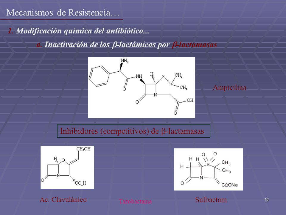 10 Inhibidores (competitivos) de -lactamasas Sulbactam Ampicilina Ac. Clavulánico 1. Modificación química del antibiótico... a. Inactivación de los -l