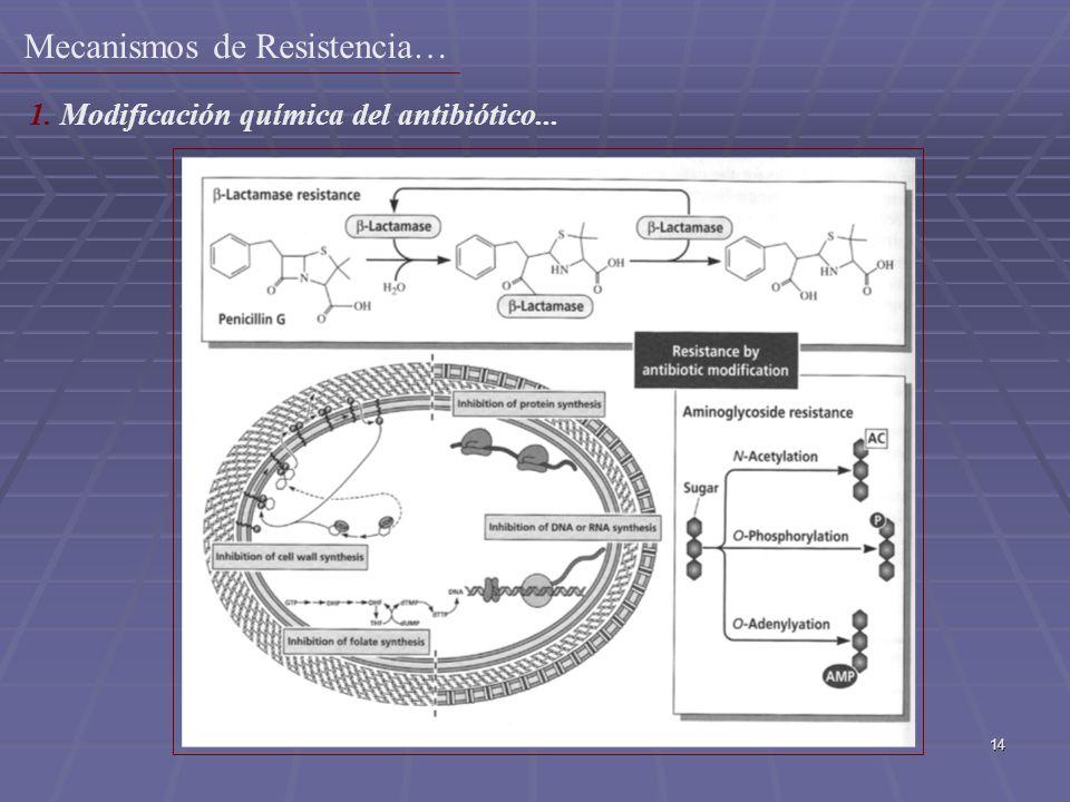 14 1. Modificación química del antibiótico... Mecanismos de Resistencia…