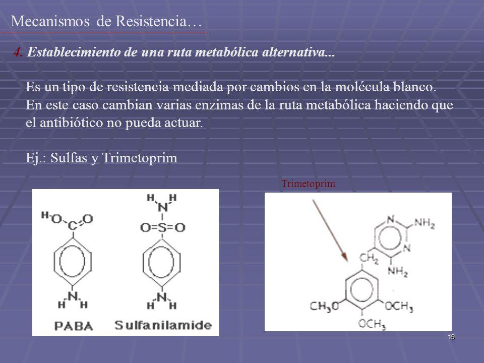 19 Es un tipo de resistencia mediada por cambios en la molécula blanco. En este caso cambian varias enzimas de la ruta metabólica haciendo que el anti