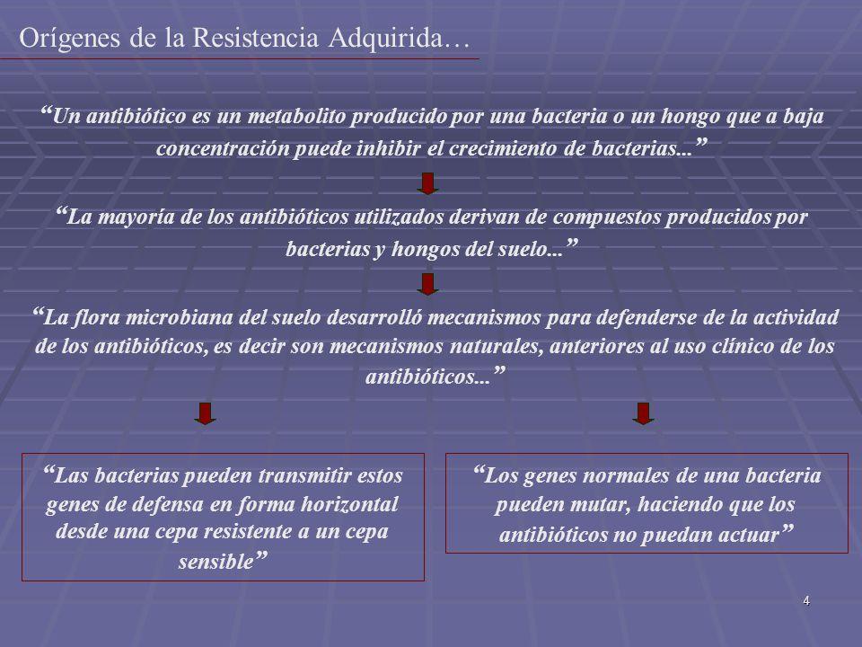 25 Se habla de resistencia en tres niveles: 1-Mecanismo de resistencia: codificado por la célula bacteriana 2-Resistencia poblacional: frecuencia de mutación 3-Resistencia farmacocinetica por que el ATM no alcanza concentraciones útiles en donde se esta produciendo una infección-