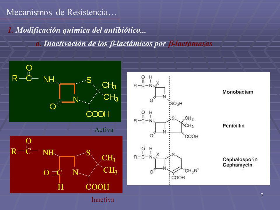 7 N S NH O COOH CH 3 CH 3 C O R H C Activa Inactiva 1. Modificación química del antibiótico... a. Inactivación de los -lactámicos por -lactamasas Meca