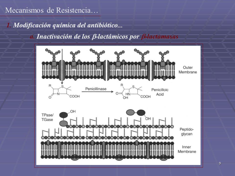 9 1. Modificación química del antibiótico... a. Inactivación de los -lactámicos por -lactamasas Mecanismos de Resistencia…