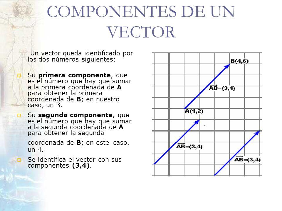 COMPONENTES DE UN VECTOR Un vector queda identificado por los dos números siguientes: Su primera componente, que es el número que hay que sumar a la p