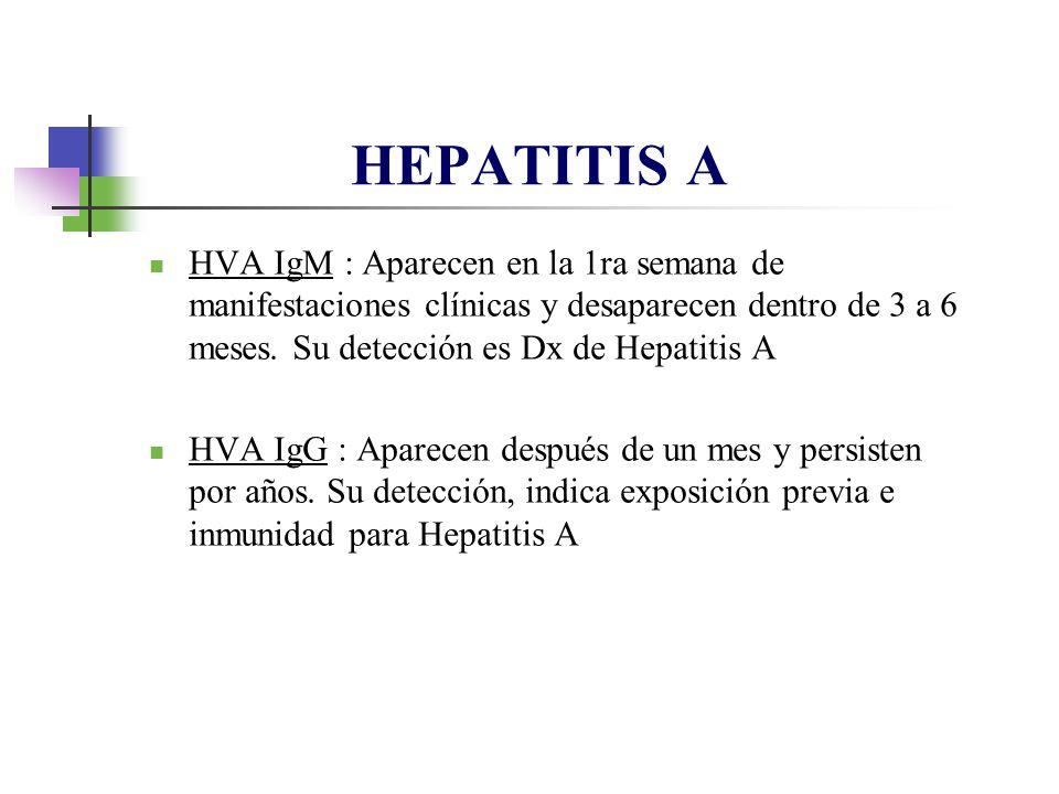 HVA IgM : Aparecen en la 1ra semana de manifestaciones clínicas y desaparecen dentro de 3 a 6 meses. Su detección es Dx de Hepatitis A HVA IgG : Apare