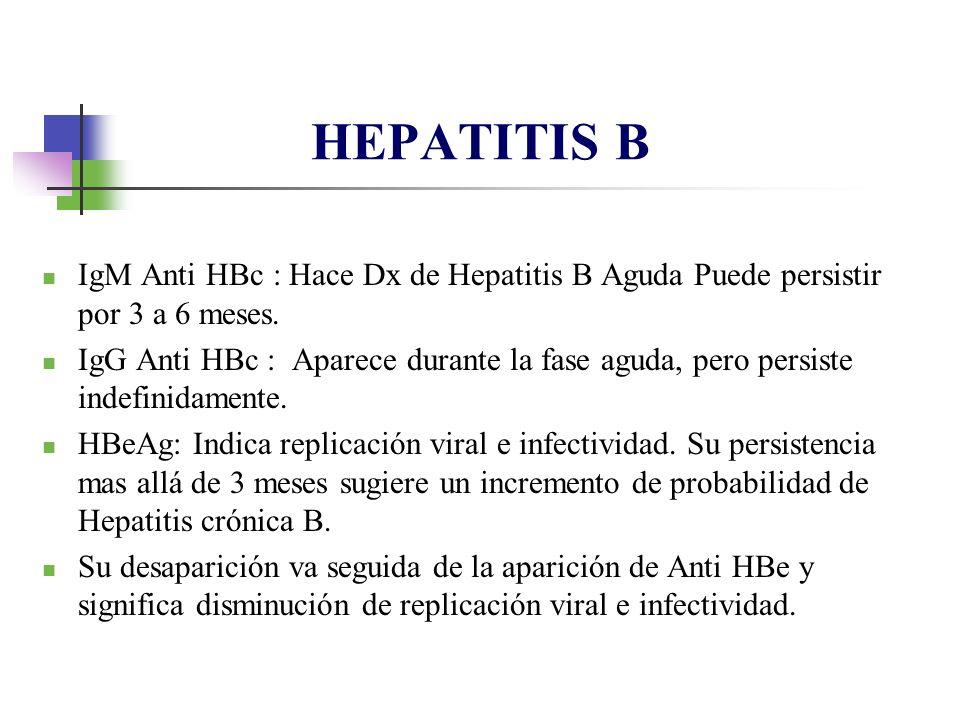 IgM Anti HBc : Hace Dx de Hepatitis B Aguda Puede persistir por 3 a 6 meses. IgG Anti HBc : Aparece durante la fase aguda, pero persiste indefinidamen