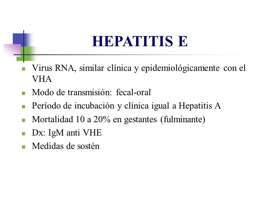 Virus RNA, similar clínica y epidemiológicamente con el VHA Modo de transmisión: fecal-oral Período de incubación y clínica igual a Hepatitis A Mortal